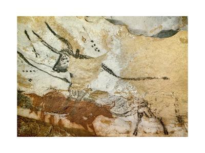 Caves of Lascaux, Fourth Bull, Below: Red Cow with Calf, Great Hall, Right Wall, C. 17,000 BC--Giclee Print
