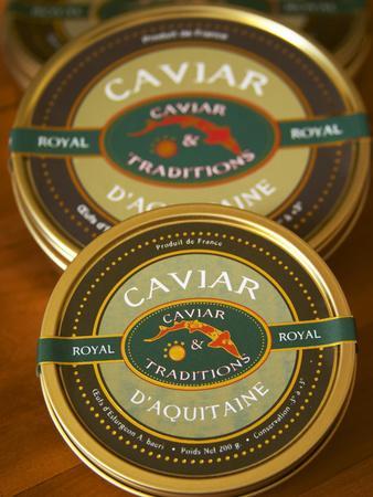 https://imgc.artprintimages.com/img/print/caviar-d-aquitaine-royale-from-caviar-and-traditions-caviar-et-prestige-saint-sulpice-et-cameyrac_u-l-p24igx0.jpg?p=0