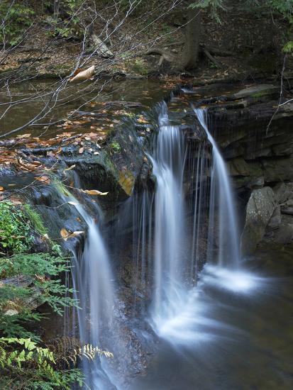 Cayuga Falls, Ricketts Glen State Park, Pennsylvania, Usa-Tim Fitzharris-Photographic Print