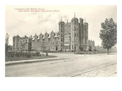 Cazenove and Beebe Halls, Wellesley College, Wellesley, Mass.--Art Print