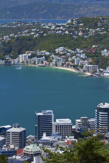 Cbd, Wellington Harbour and Oriental Bay, Wellington, North Island, New Zealand-David Wall-Photographic Print