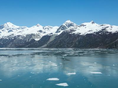 Icebergs in Alaska's Glacier Bay by cec72