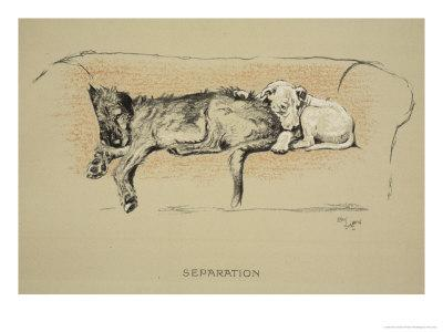 Separation, 1930, 1st Edition of Sleeping Partners