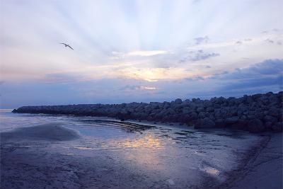 Cedar Island Sunrise-Alan Hausenflock-Photographic Print