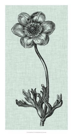 Celadon Beauty IV-Vision Studio-Giclee Print