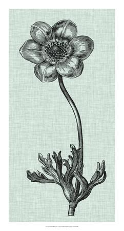 https://imgc.artprintimages.com/img/print/celadon-beauty-iv_u-l-f5q4da0.jpg?p=0