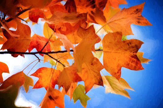 Celebrate Autumn-Philippe Sainte-Laudy-Photographic Print