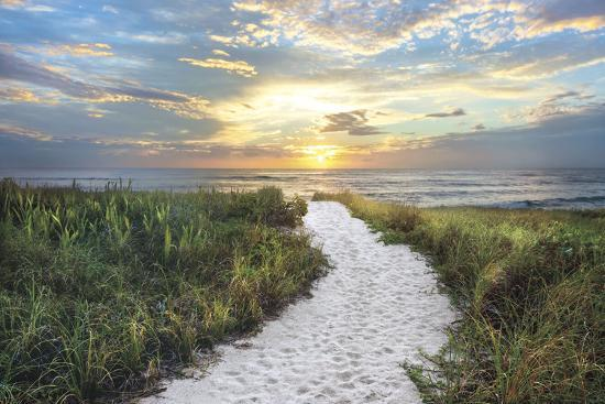 celebrate-life-gallery-morning-trail