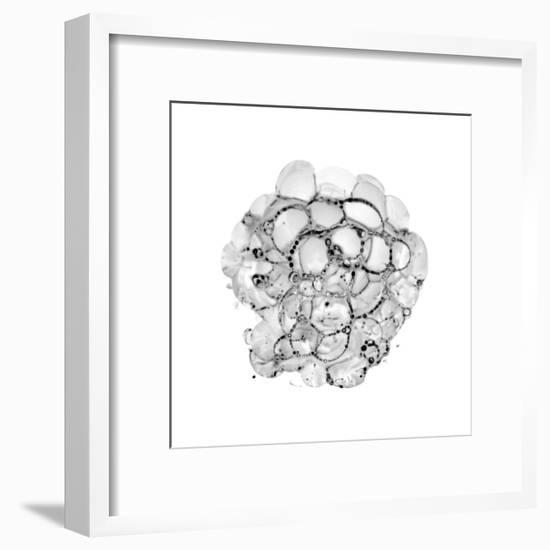 Cellular Cloud A-THE Studio-Framed Premium Giclee Print