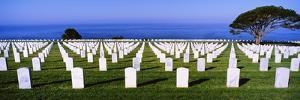 Cemetery at waterfront, Fort Rosecrans National Cemetery, Point Loma, San Diego, California, USA