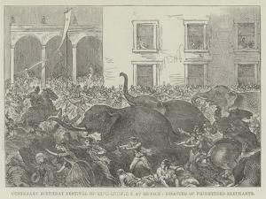 Centenary Birthday Festival of King Ludwig I at Munich, Disaster of Frightened Elephants