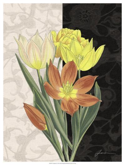 Centerpiece II-James Burghardt-Giclee Print
