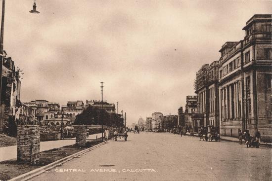 'Central Avenue, Calcutta', c1900-Unknown-Giclee Print