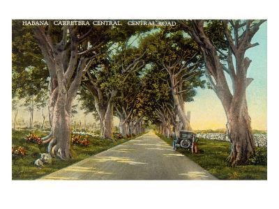 Central Highway, Havana--Art Print