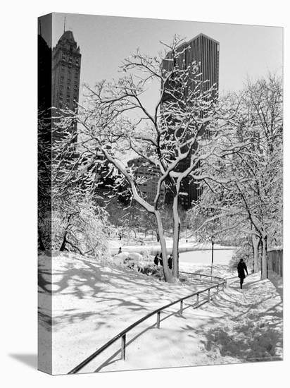 Central Park After a Snowstorm-Alfred Eisenstaedt-Stretched Canvas Print