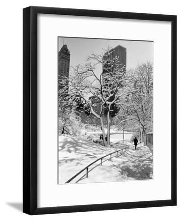Central Park After a Snowstorm-Alfred Eisenstaedt-Framed Premium Photographic Print