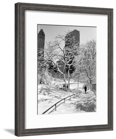 Central Park After a Snowstorm-Alfred Eisenstaedt-Framed Premium Photographic Print