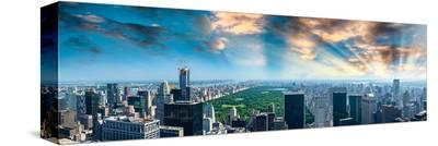 Central Park at Dawn--Stretched Canvas Print