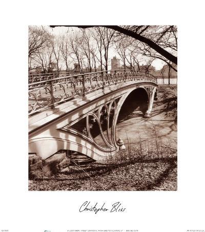 Central Park Bridge III-Christopher Bliss-Art Print