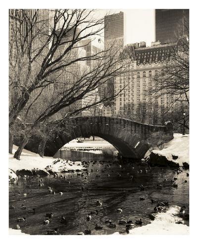 Central Park Bridges 4-Chris Bliss-Art Print