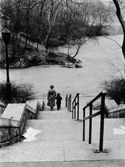 Central Park in Winter, c.1953-64-Nat Herz-Photographic Print