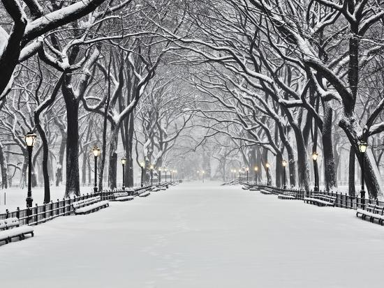 Central Park in Winter-Rudy Sulgan-Photographic Print