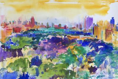 Central Park, New York, 2011-Peter Graham-Giclee Print