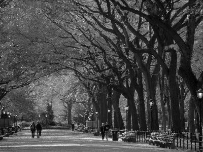 Central Park, New York City, Ny, USA-Walter Bibikow-Photographic Print