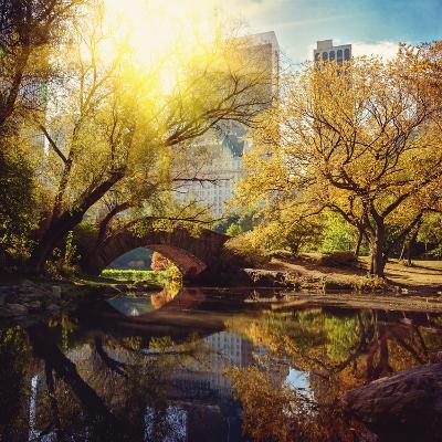 Central Park Pond and Bridge. New York, Usa.-Maglara-Photographic Print