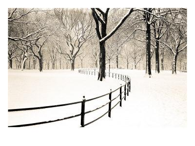 https://imgc.artprintimages.com/img/print/central-park-snow_u-l-pxky450.jpg?p=0