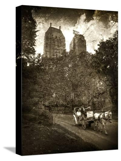 Central Park-Dale MacMillan-Stretched Canvas Print