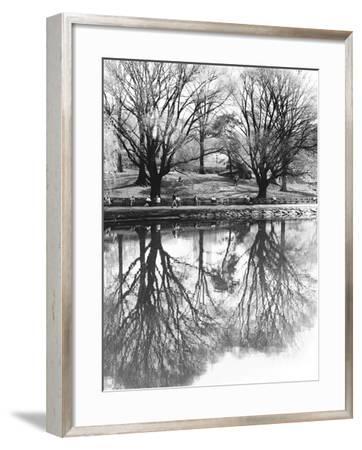 Central Park-Chris Bliss-Framed Photographic Print