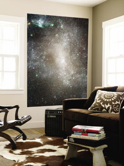 Central Region of the Barred Spiral Galaxy NGC 1313--Wall Mural
