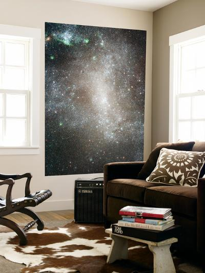 Central Region of the Barred Spiral Galaxy NGC 1313--Giant Art Print