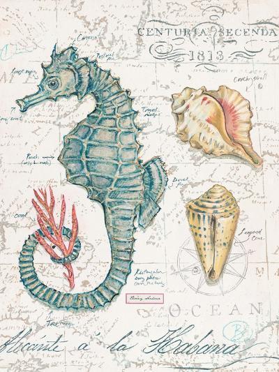 Centuria Seahorse-Chad Barrett-Art Print
