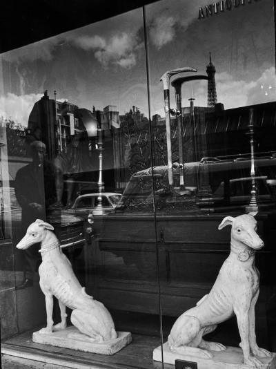 Ceramic Hounds in Window of Antique Shop-Alfred Eisenstaedt-Photographic Print