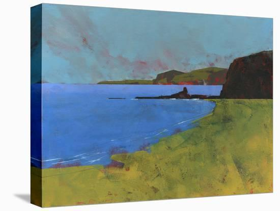 Ceredigion Cliffs-Paul Bailey-Stretched Canvas Print