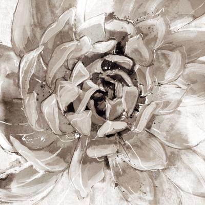 https://imgc.artprintimages.com/img/print/cereus-aeonium-fawn_u-l-f90bnx0.jpg?p=0
