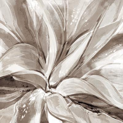 https://imgc.artprintimages.com/img/print/cereus-aloe-fawn_u-l-f90bnz0.jpg?p=0