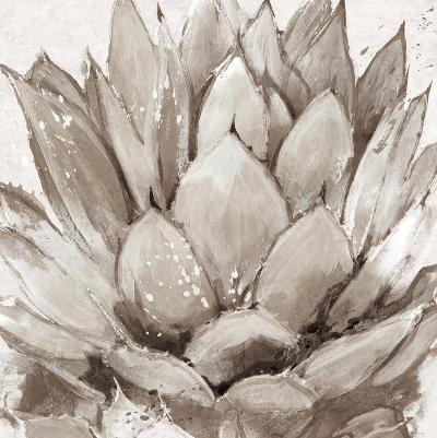 Cereus Echeveria - Fawn-Tania Bello-Art Print