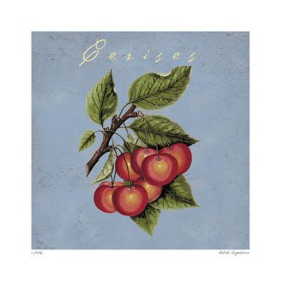 Cerises-Paula Scaletta-Giclee Print