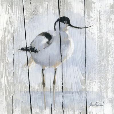 1 Oiseau