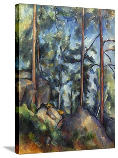 Cezanne: Pines, 1896-99-Paul C?zanne-Stretched Canvas Print