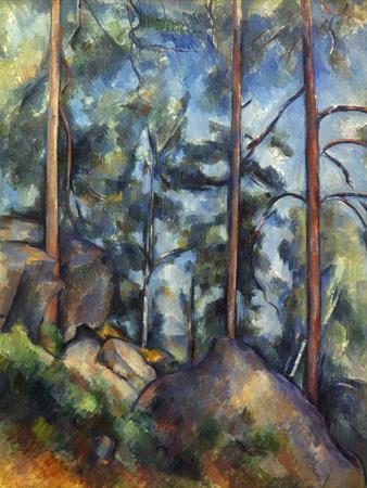Cezanne Pines 1896 99 Giclee Print By Paul C 233 Zanne Art Com