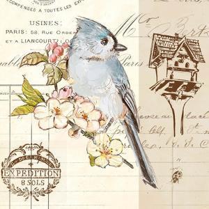 Bird Sketch IV by Chad Barrett