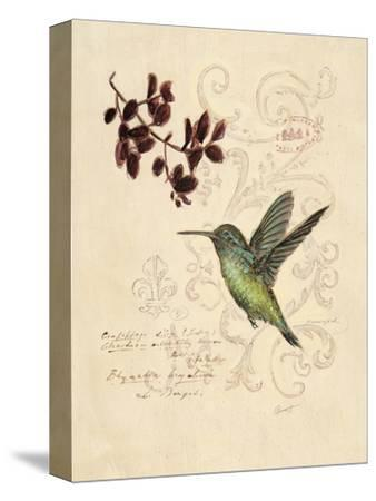 Filigree Hummingbird