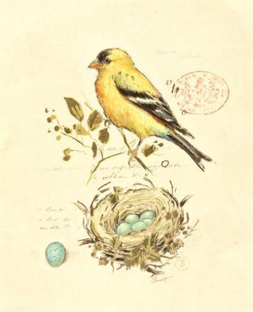 Gilded Songbird II by Chad Barrett