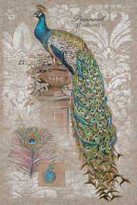 Peacock on Linen 2 by Chad Barrett
