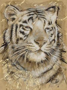 Safari Tiger by Chad Barrett