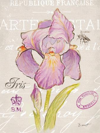 Sketchbook Iris